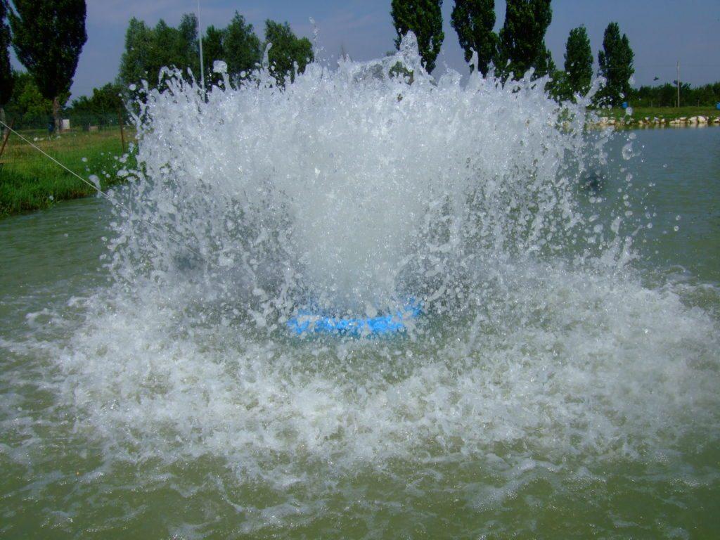 Splash 2008 1