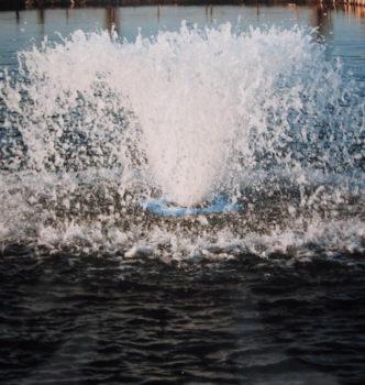Splash 2008 2