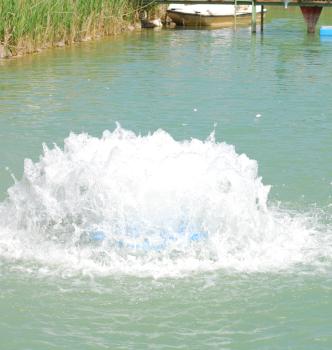 Splash2008.1