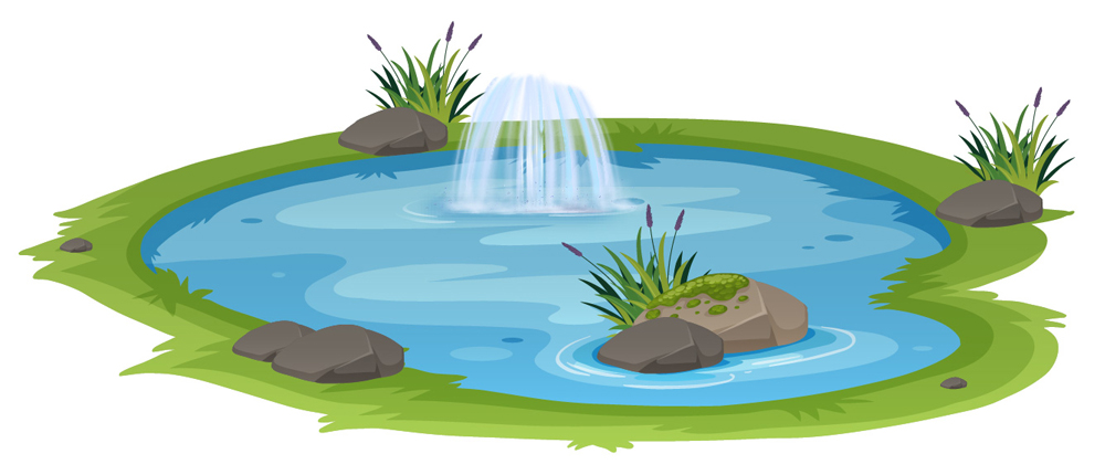 M pond 01 2