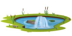 S pond 01