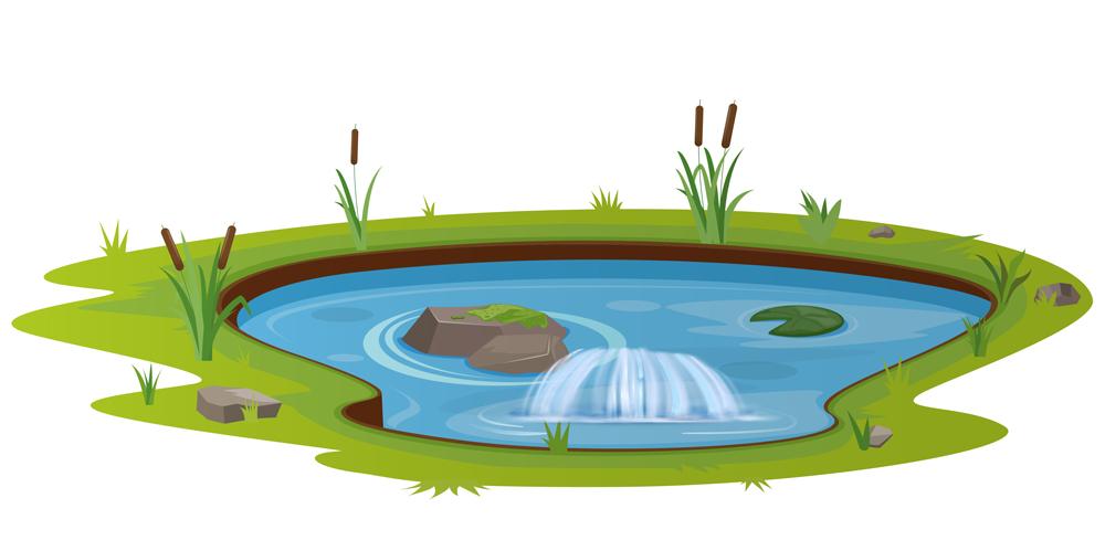 S pond 02