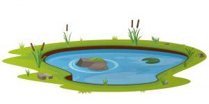 S pond 03 1