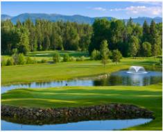 golf course 1 1 1
