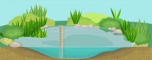 Pond depth 01