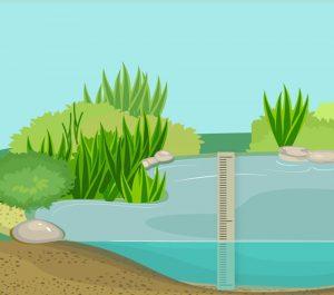 Pond depth 02 V2